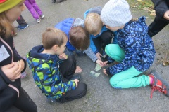 lesni-pedagogika-016