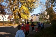22.10.2012 Podzimní procházka do lesíka